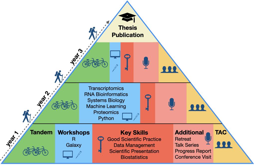 Pyramide Curriculum